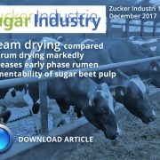 Steam drying compared to drum drying markedly increases early phase rumen fermentability of sugar beet pulp
